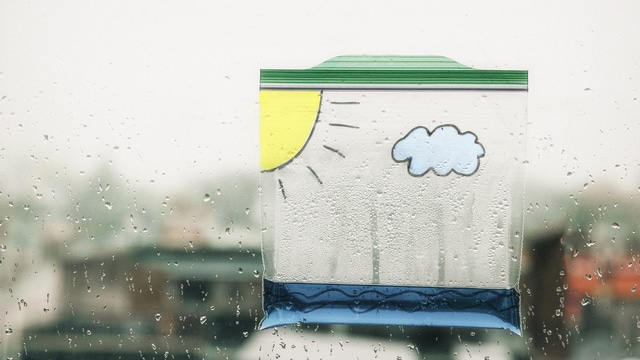 How to Make a Water Cycle in a Bag